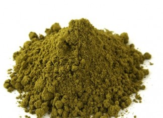 benefits of hemp protein