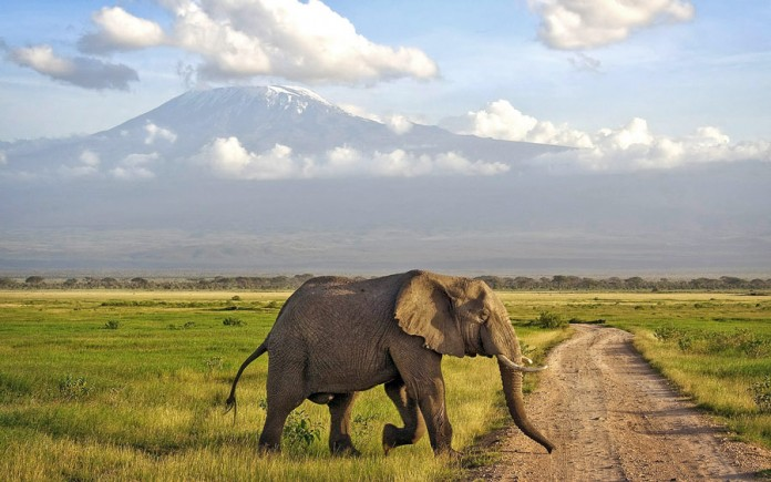 tourist attractions in kenya