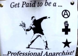 Get paid to be a professional anarchist